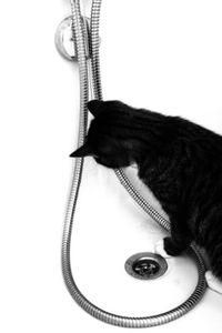 easy à la douche